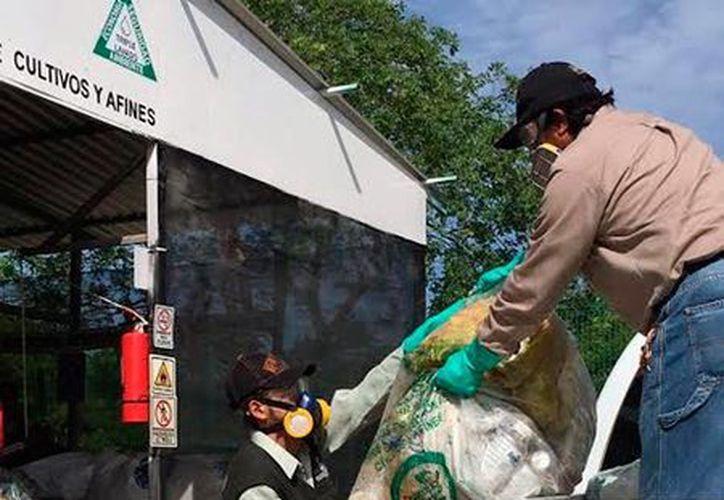 Uno de los centros de acopio de envases de agroquímicos se instaló en el Parque Metropolitano del Sur, en Mérida. (Archivo/SIPSE).