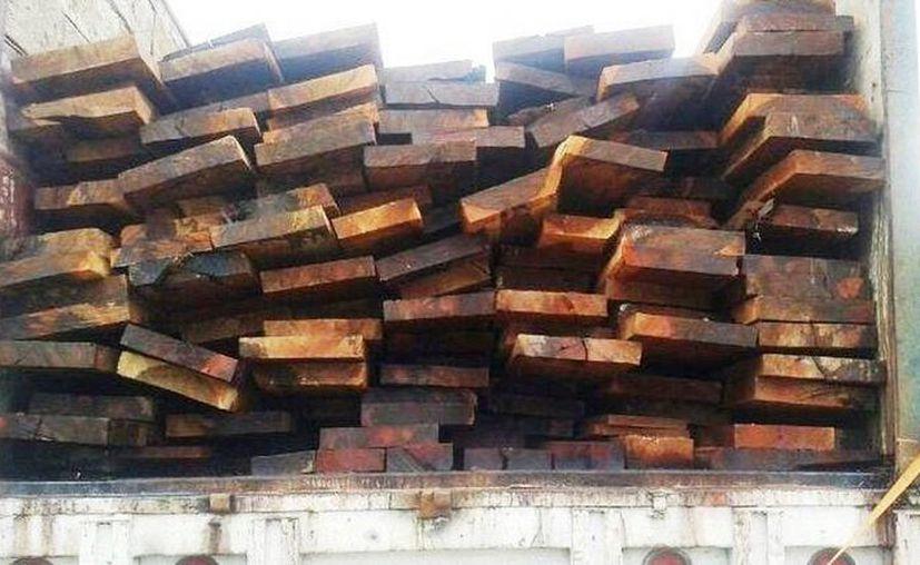 La madera y el vehículo en la que era transportada quedaron a disposición de la Profepa. (Archivo/SIPSE)
