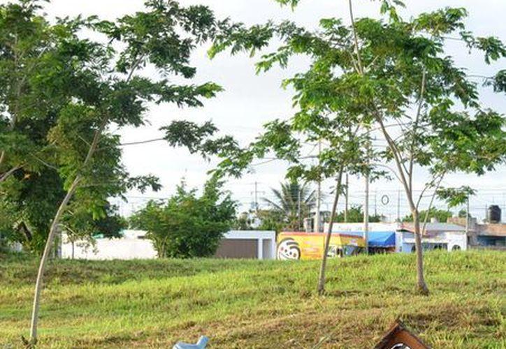 La Secretaría de Salud de Yucatán exhorta a la población a colaborar una vez más este fin de semana juntando los desechos para su recolección. (Milenio Novedades)