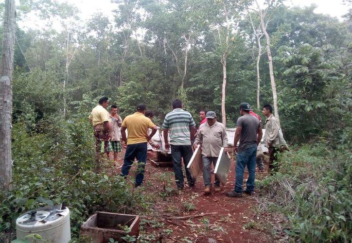 la afectación en la producción mielera fue en la comunidad de Candelaria. (Foto: Alejandro Poot/SIPSE)