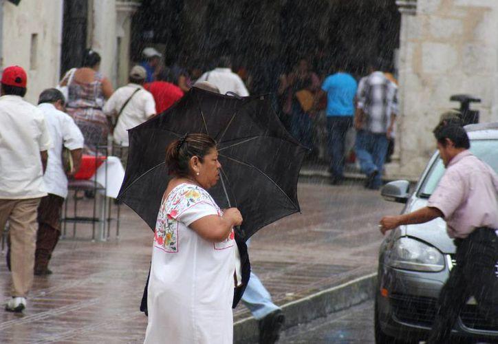 Fuerte lluvia bañó a Mérida desde temprana hora. (Wilberth Argüelles/SIPSE)