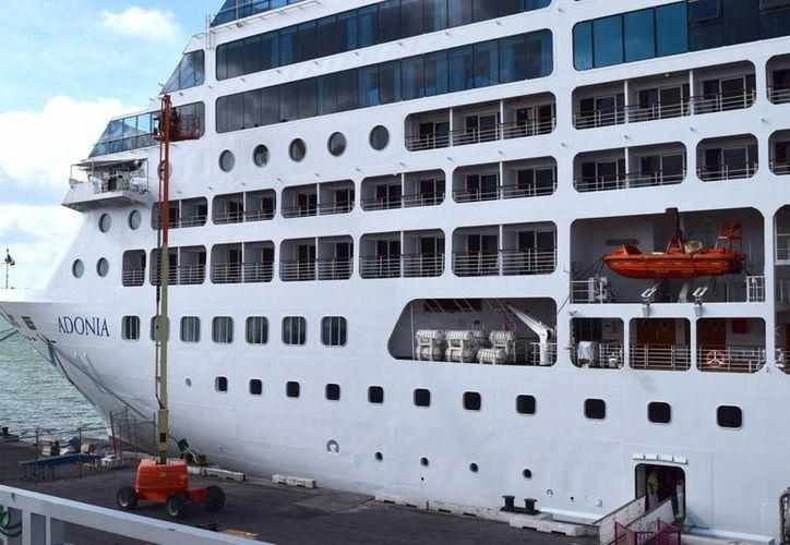 Media docena de cubanoamericanos viajarán esta tarde cuando el buque Adonia zarpe del Puerto de Miami con 700 pasajeros a Cuba, en el primer crucero en viajar de Estados Unidos a la mayor de las Antillas en medio siglo. (Notimex)