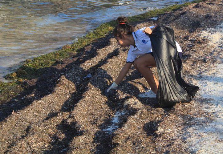 El mayor recale de basura siguen siendo las colillas de cigarro y el plástico. (Luis Soto/ SIPSE)