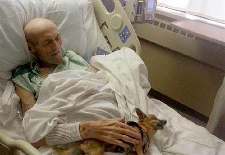 James Wathen descansa con su perro, Bubba, durantes su segundo encuentro. (Shelter Knox-Whitley Animal/today.com)