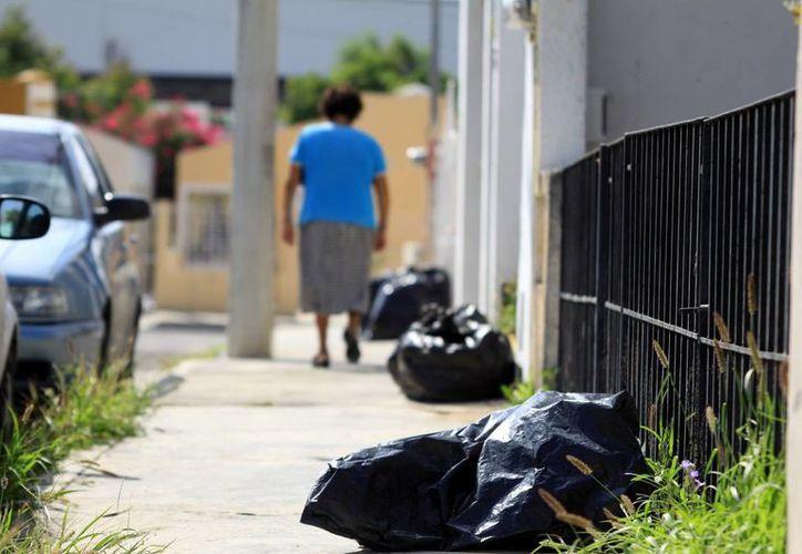 El Ayuntamiento paga 2.7 mdp al año para dar gratis el servicio de recolección de basura a jubilados, pensionados, escuelas y personas de escasos recursos. (Archivo/SIPSE)