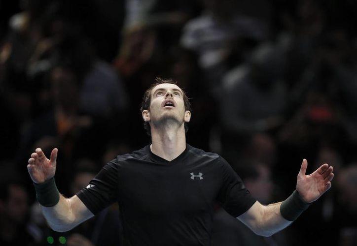Andy Murray se enfrentará en la final contra el ganador de la serie entre Novak Djokovic y el japonés Kei Nishikori. (Kirsty Wigglesworth/AP)