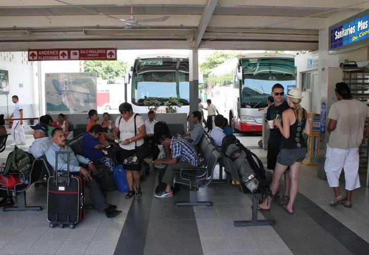 La actividad en la terminal de autobuses se ha incrementado en los últimos días, siendo la cantidad de llegadas el doble que las salidas. (Rossy López/SIPSE)