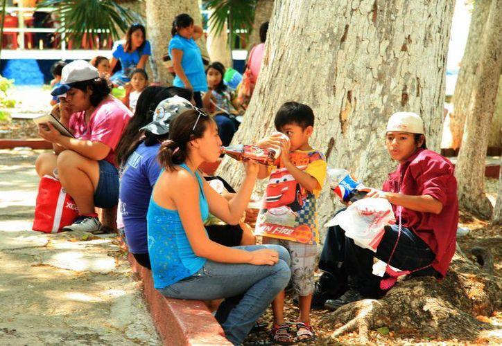 Las familias yucatecas deberán tener a mano sus paraguas e impermeables ante el clima que se avecina. (SIPSE)