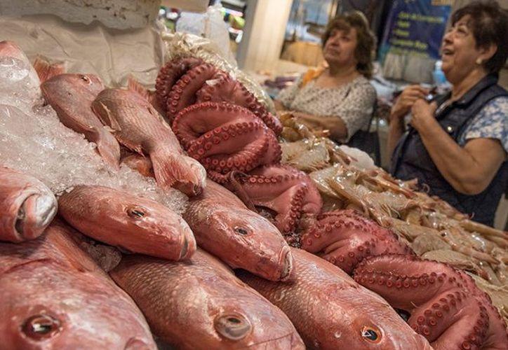 Si compras productos del mar congelados, evita descongelarlos a temperatura ambiente. (Cuartoscuro)