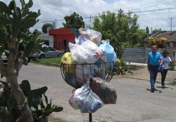 El abandono de las autoridades municipales ha agravado el problema de la basura. (Harold Alcocer/SIPSE)