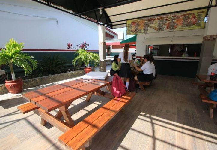 Los estudiantes del Colegio de Bachilleres gozan de mejores espacios, además de equipo de cómputo y mobiliario. (Gustavo Villegas/SIPSE)