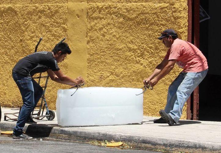 La venta de hielo incrementó en la ciudad desde inicio de mes. (Milenio Novedades)