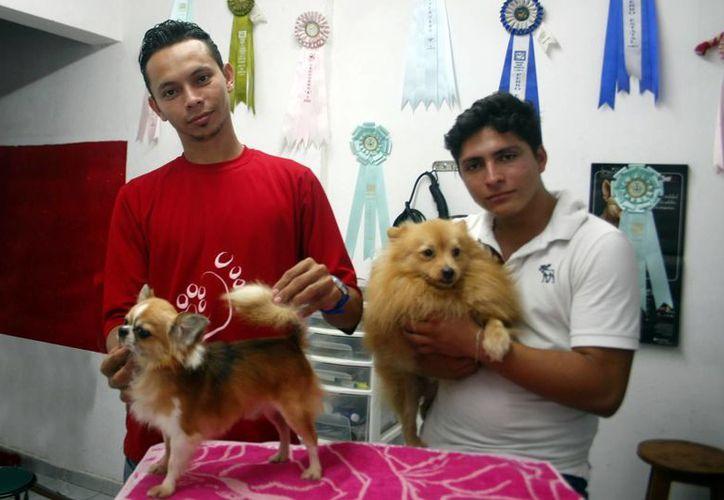 David Pino Rosado y Rashid Ariel Cortázar señalan que la clave de su éxito es el trato digno que le ofrecen a los animales. (Milenio Novedades)