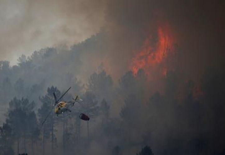 Portugal se ha visto especialmente golpeado por los incendios forestales este año debido a una sequía. (El Financiero)