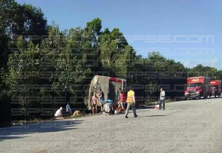 El accidente ocurrió durante la mañana de ayer en la carretera Cafetal-Mahahual. (Redacción/SIPSE)