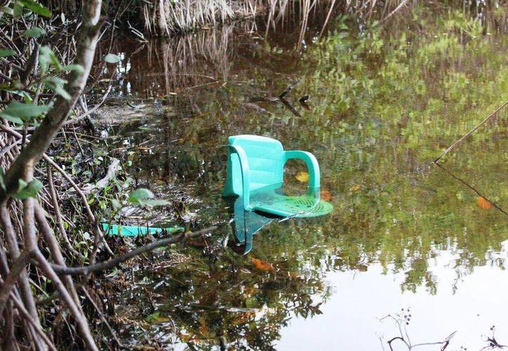 Bañistas se quejaron de la basura que dejan las personas en el mangle. (Foto: Octavio Martínez)