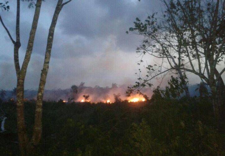Al día se atienden cuatro conatos de incendios. (Raúl Balam/SIPSE)