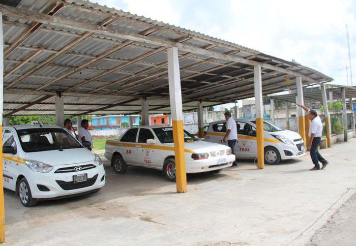 Las ganancias para los trabajadores del volante no les alcanzan para lo básico, por lo que muchos ya contemplan la posibilidad de dejar de 'taxiar'. (Carlos Castillo/SIPSE)