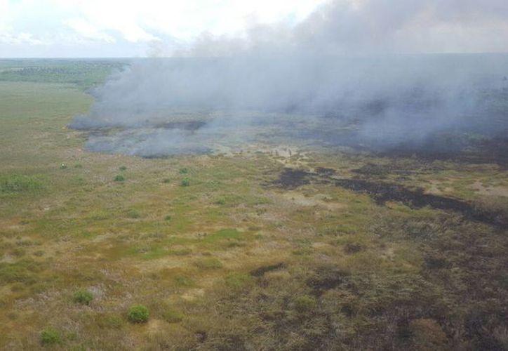 El equipo de combate del incendio de San Felipe ha tenido que lidiar con fuertes vientos. (Foto de archivo de SIPSE)