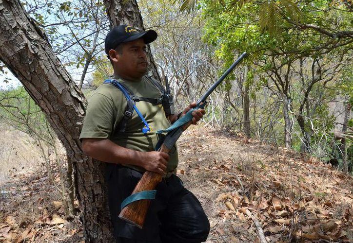 La dependencia se dijo dispuesta a realizar un canje de armas. (Archivo/Notimex)