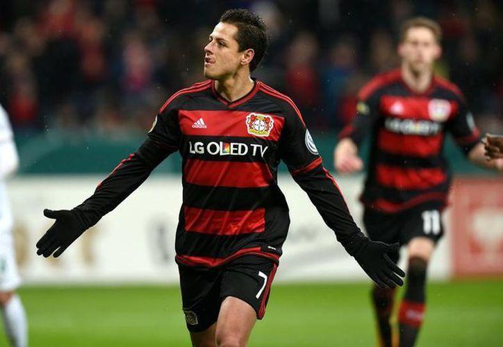 Tayfun tiene experiencia en el balompié germano con Hannover y Kaiserslautern, además fue auxiliar técnico de la selección turca entre 2012 y 2013. (Diario Mx)