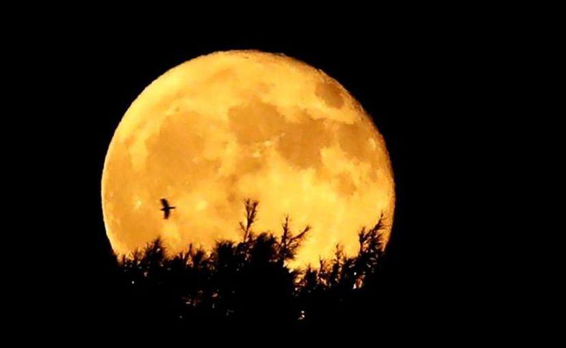 La última vez que hubo luna llena en viernes 13 fue en octubre de 2000. (Foto: contexto Internet)