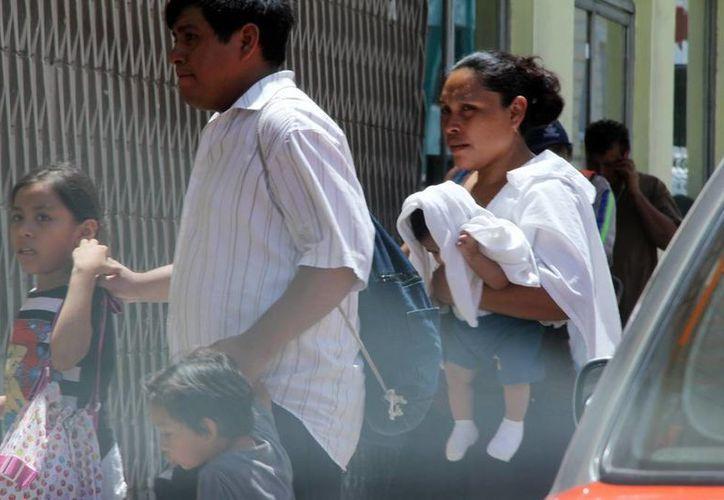 Las autoridades sanitarias exhortan a protegerse de las altas temperaturas, en especial a los niños y bebés. (Milenio Novedades)