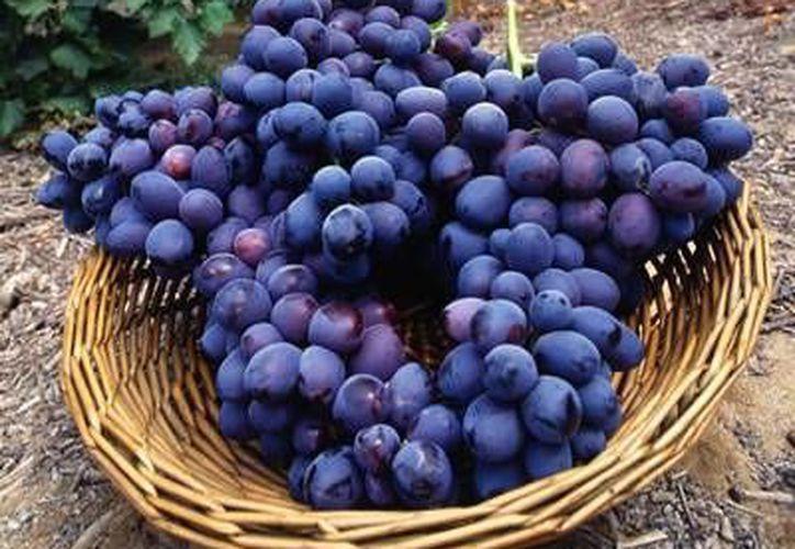 Las uvas son buenas para la hipertensión arterial. (Contexto/Internet)