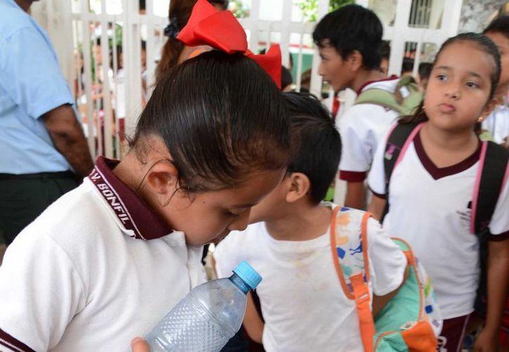 La incidencia de hipertensión en niños aumentó casi 7%. (Luis Soto/SIPSE)