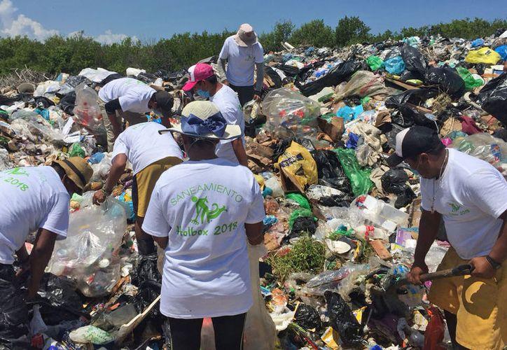 Personal de la empresa realiza labores de saneamiento en el sitio de transferencia. (Jesús Tijerina/SIPSE)