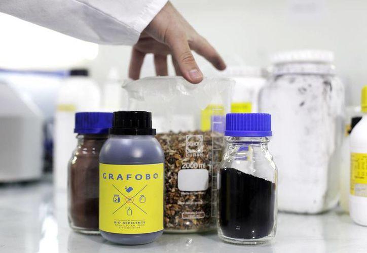Un químico chileno dice haber creado un detergente que repele al mosquito portador del zika. (EFE)