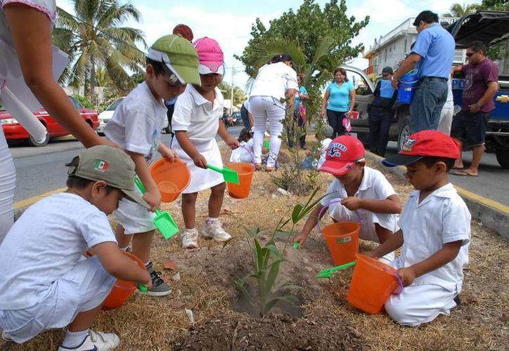 Niños acompañados de sus padres sembraron árboles en el camellón de la avenida Jesús Martínez Ross. (Lanrry Parra/SIPSE)