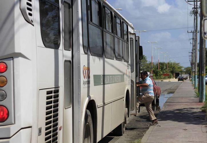 La actual empresa que ofrece el servicio de transporte no completó las rutas que se establecieron. (Harold Alcocer/SIPSE)