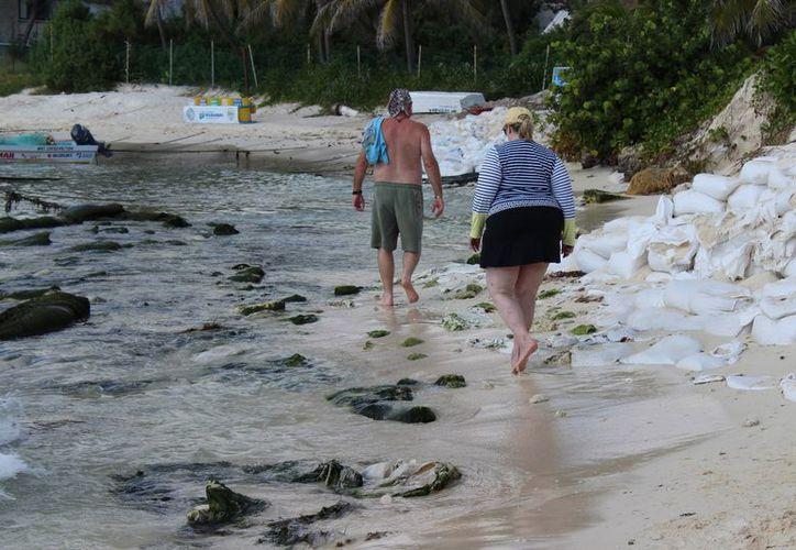 Especialistas proponen la a creación de una guía de conservación de la duna costera en Quintana Roo. (Foto: Adrián Barreto/SIPSE)