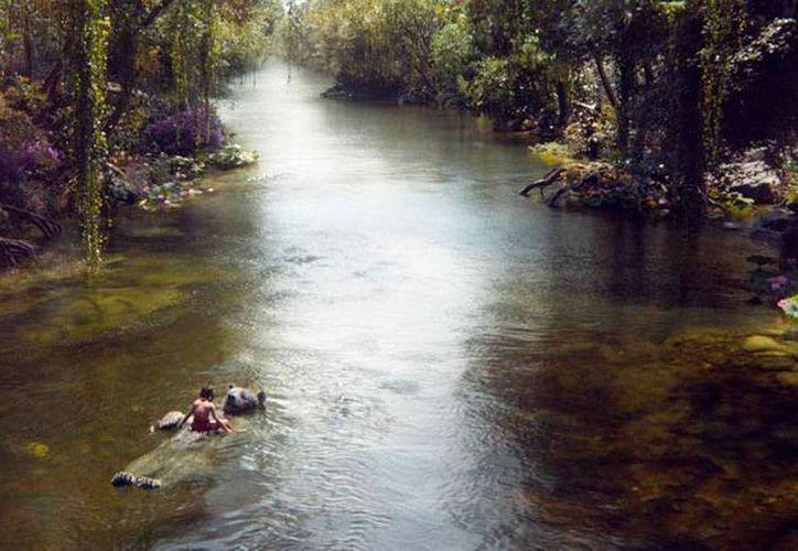 Escena de la película 'El Libro de la Selva', cuyo avance publicó Disney, en Instragram. (@Disney)