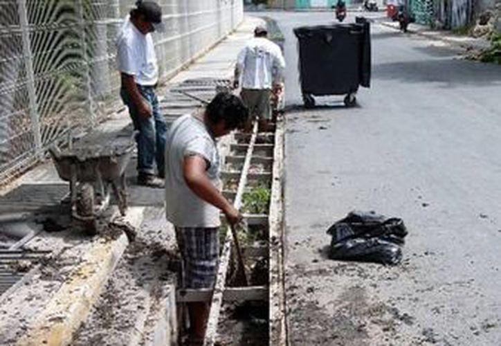 Durante la jornada de limpieza se liberó a las alcantarillas de basura y lodo. (Redacción/SIPSE)