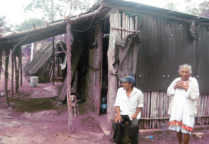 La gran mayoría de los habitantes de las comunidades rurales habitan en viviendas de madera y techos de guano. (Javier Ortiz/SIPSE)