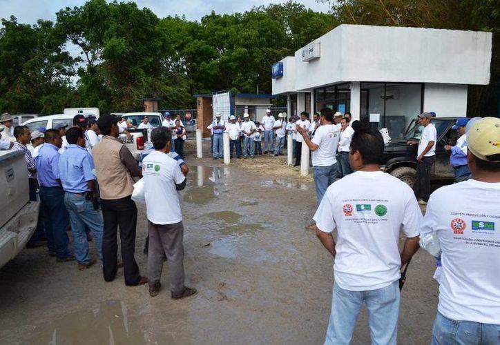 Los líderes gremiales y la industria azucarera confirmaron su participación en la recolección de envases de agroquímicos desechados. (Edgardo Rodríguez/SIPSE)