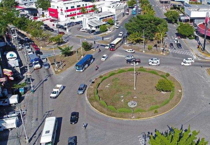 Para hacer cambios en las zonas arboladas de la ciudad debe haber permiso del área de Ecología. (Jesús Tijerina/ SIPSE)