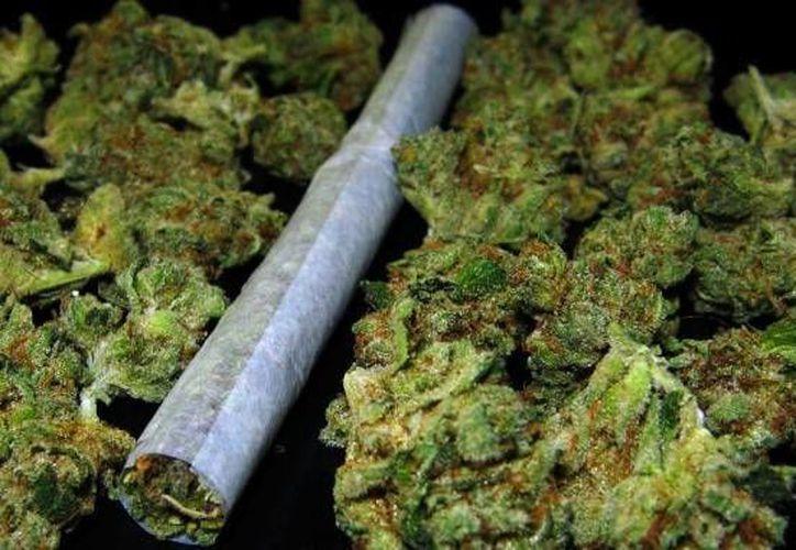 Se llevará a cabo el primer foro sobre la legalización de la marihuana, será en Cancún. (Contexto/Internet)