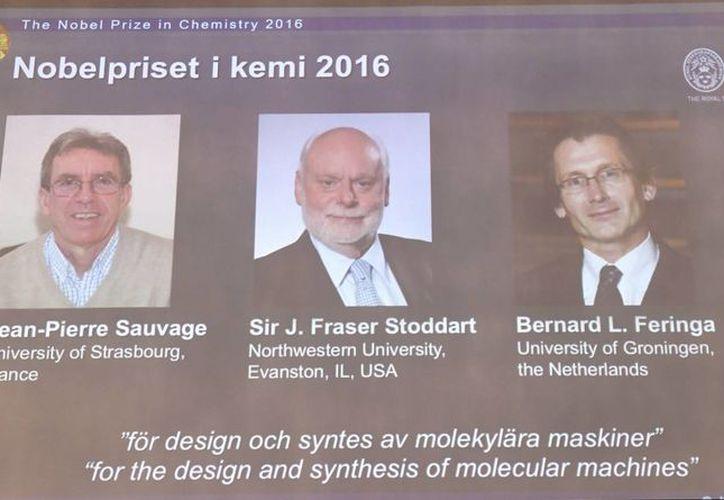 Imagen de los ganadores del Premio Nobel de Química. (Henrik Montgomery/TT vía AP)