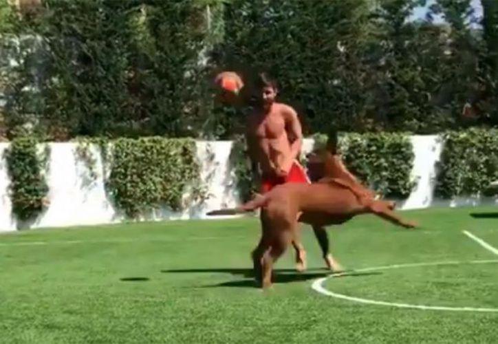 Lionel Messi se divirtió con su perro a un día de regresar formalmente a sus entrenamientos. (Twitter)