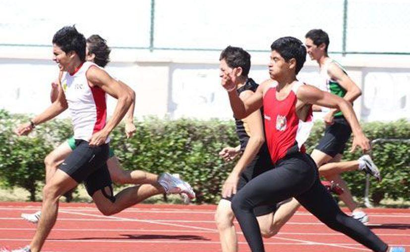 Las fichas corresponderán a los atletas que entrenen en los centros deportivos del estado. (SIPSE)