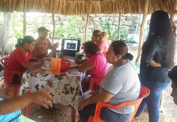 El grupo está conformado por mujeres que trabajan la semilla del árbol, la procesan y la convierten en productos comestibles. (Joel Zamora/SIPSE)