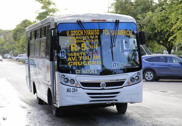 Se trabaja en los nuevos paraderos de los autobuses de transporte urbano. (Israel Leal/SIPSE)