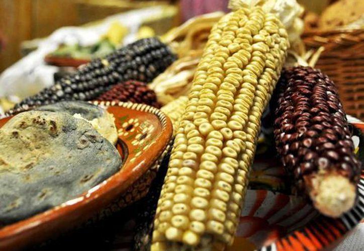 Las antocianinas, que funcionan como antioxidantes, están presentes en el maíz azul. (Archivo/Notimex)