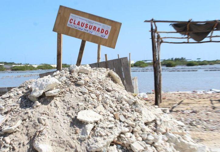 La Profepa constató remoción de vegetación en una superficie total de 1.82 hectáreas, por lo que clausuró temporalmente dos predios en Chicxulub Puerto, en el municipio de Progreso. (Foto cortesía)
