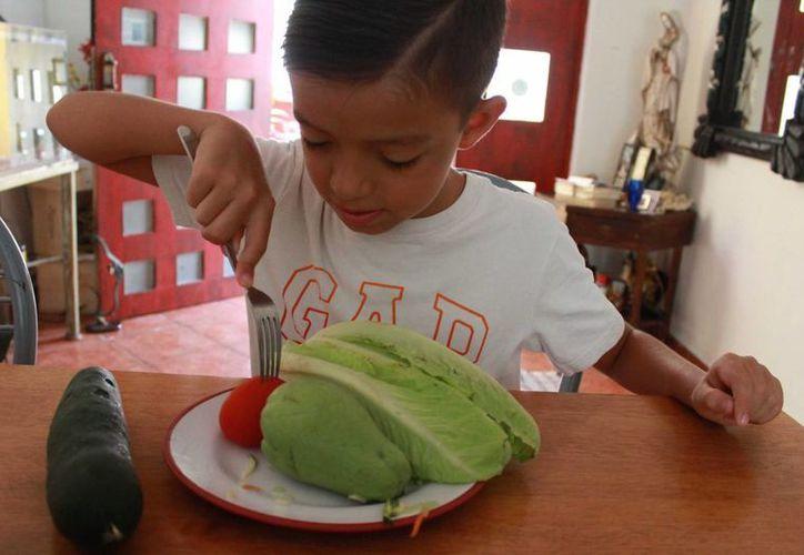 La dieta vegana puede mermar el desarrollo de los niños. (Luis Soto/SIPSE)