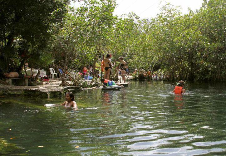 Antes de julio se prevé que el municipio de Solidaridad ya cuente con un reglamento de cenotes. (Adrián Barreto/SIPSE)