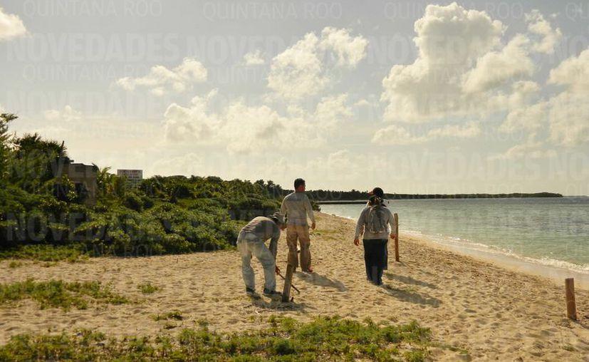 El complejo turístico promovido por la empresa Jaguar Servicios Inmobiliarios S.A. de C.V.  pretendía edificar un hotel y club de playa en un área poblada de manglares, fauna, dunas y vegetación costera.  (Redacción/SIPSE)